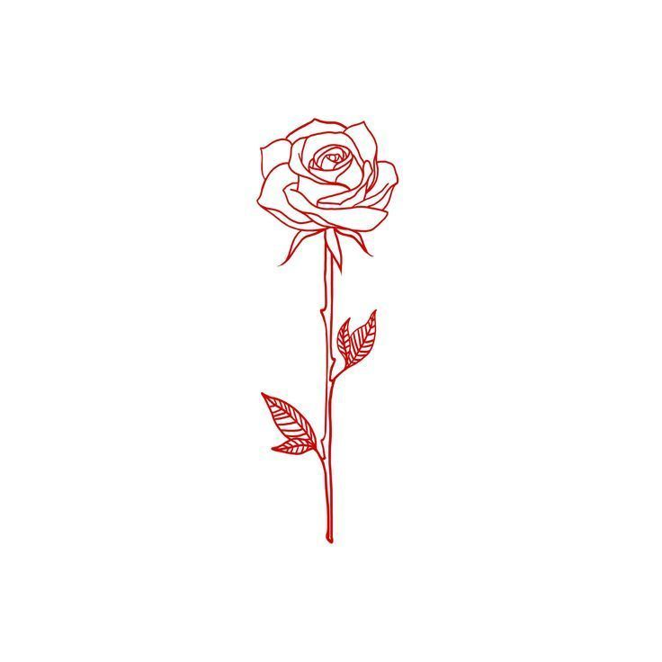 Single-line drawing of a rose. A beautiful tattoo idea! #simple_tattoo_rose #tattoodrawings