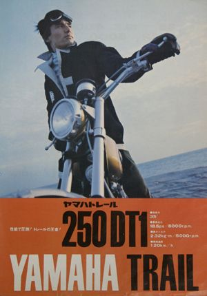 250DT1