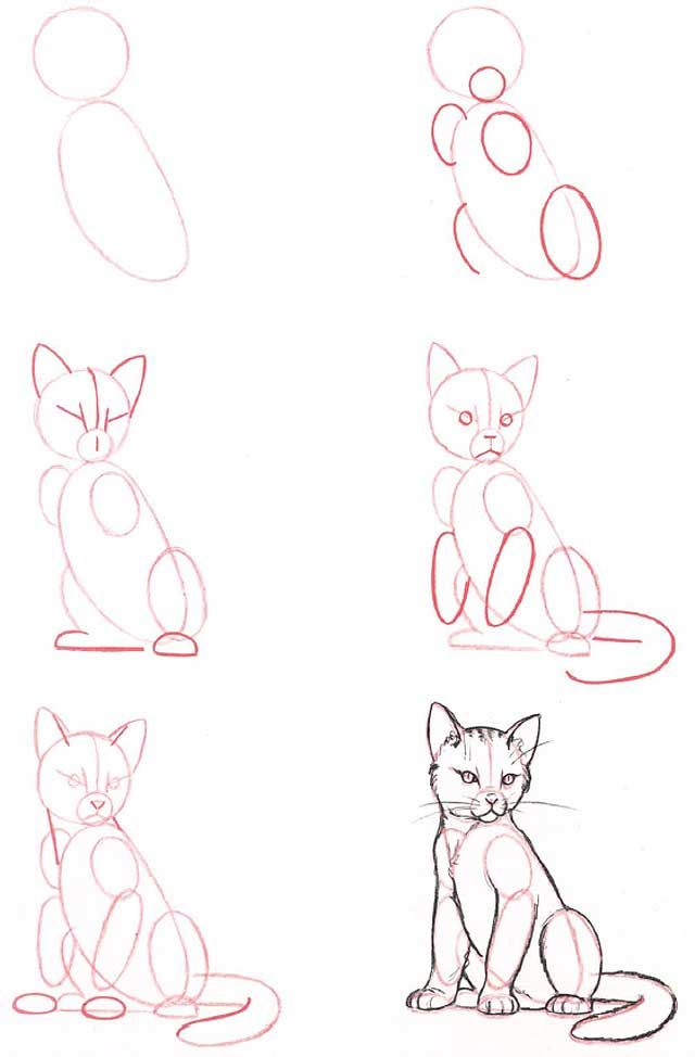 Pin By Lea Marie On Art Photography Cat Drawing Tutorial Drawing People Drawings