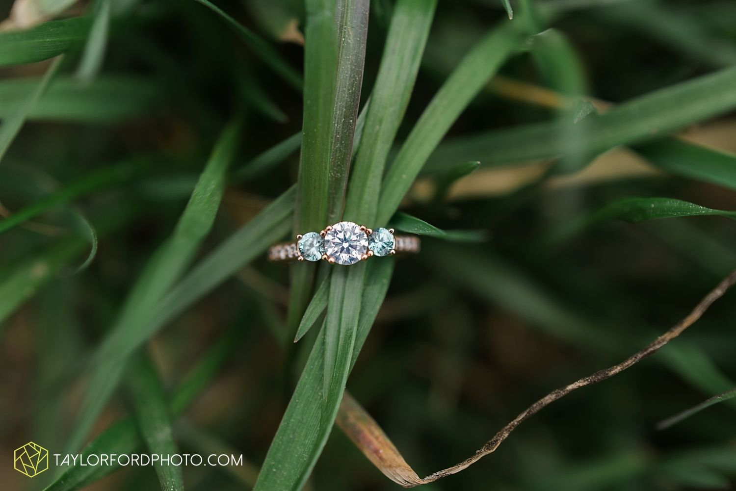 Fort Wayne Engagement Photographer | Engagement ring | Taylor Ford | www.taylorfordphoto.com