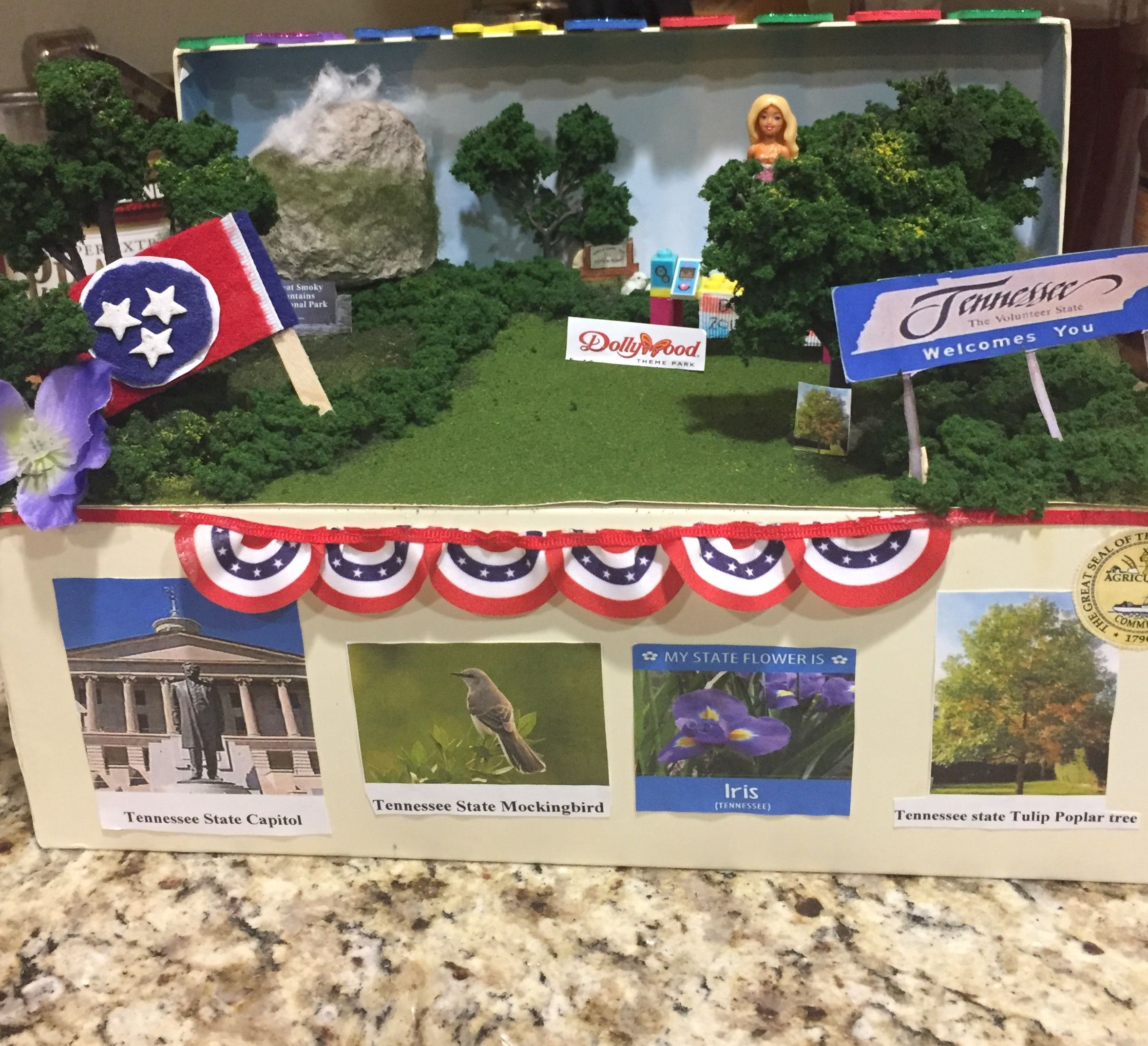 Pin By Cynthia Castro On Tennessee State Float With