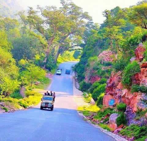 صور من بلادي اليمن Yemen Socotra Around The Worlds