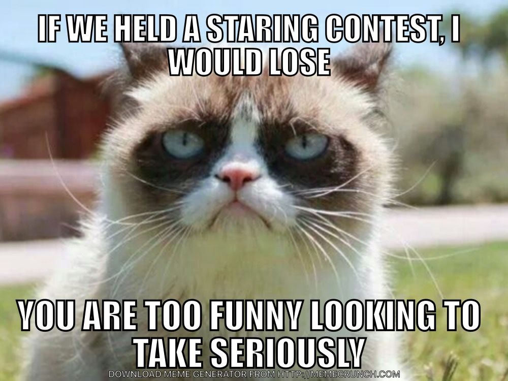 Pin by FlaWLessMinigun on Grumpy Cat (With images ...