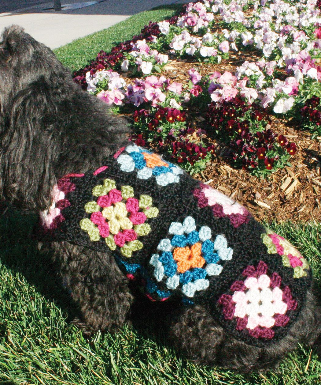 Dog Sweater- @Lyn Robinson Brown, you need to make one of these for ...