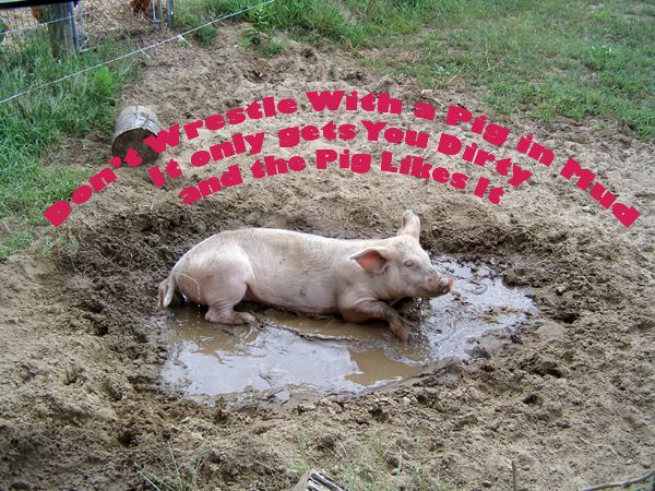 Image result for muddy pig saying