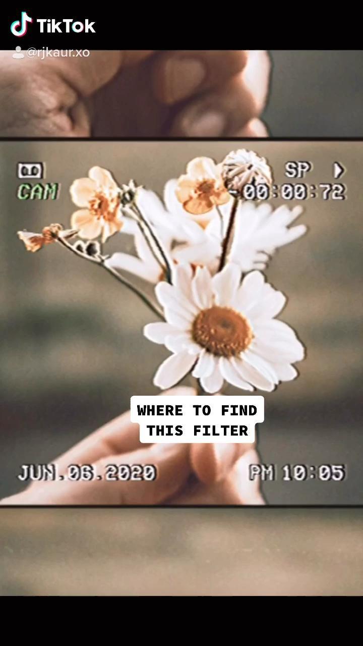 Rj Kaur Rjkaur Xo Video Instagram Ideas Photography Instagram Photo Ideas Posts Instagram Theme Feed