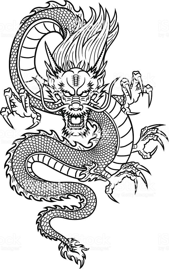 Traditional Asian Dragon. This is vector illustration ideal for a...