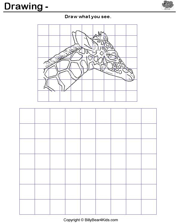 Grid drawing worksheets worksheet ixiplay free resume for Free scale drawing software