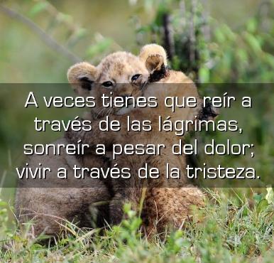 Imagenes De Tristeza Y Dolor Con Frases Poemas Tristes