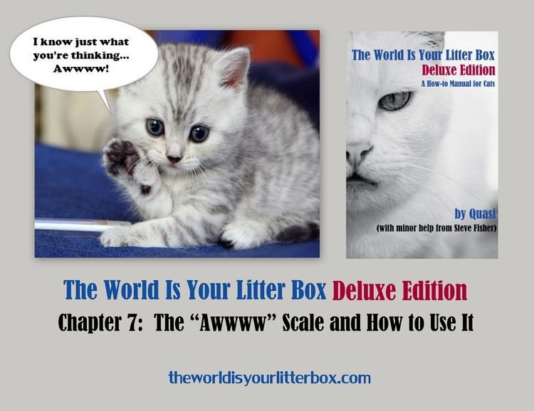 The World Is Your Litter Box Deluxe Edition Chapter 7 Litter