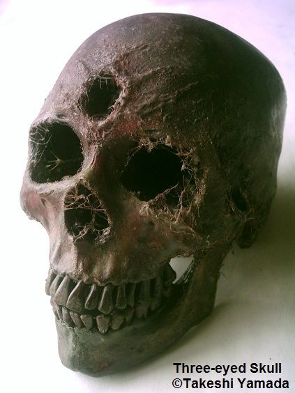 Three-eyed Human Skull Origin: Madurai, India Date: circa ... | 423 x 564 jpeg 37kB