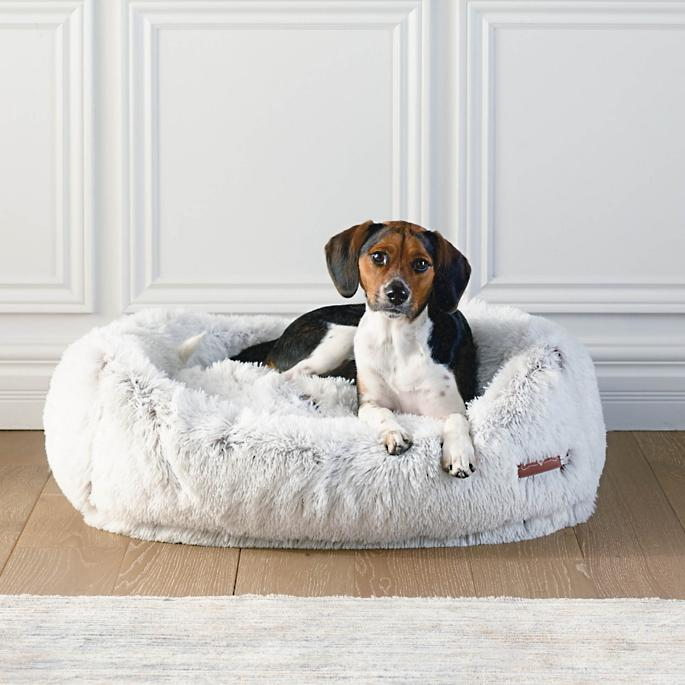 Arctic Shag Pet Bed in 2020 (With images) Comfy couch