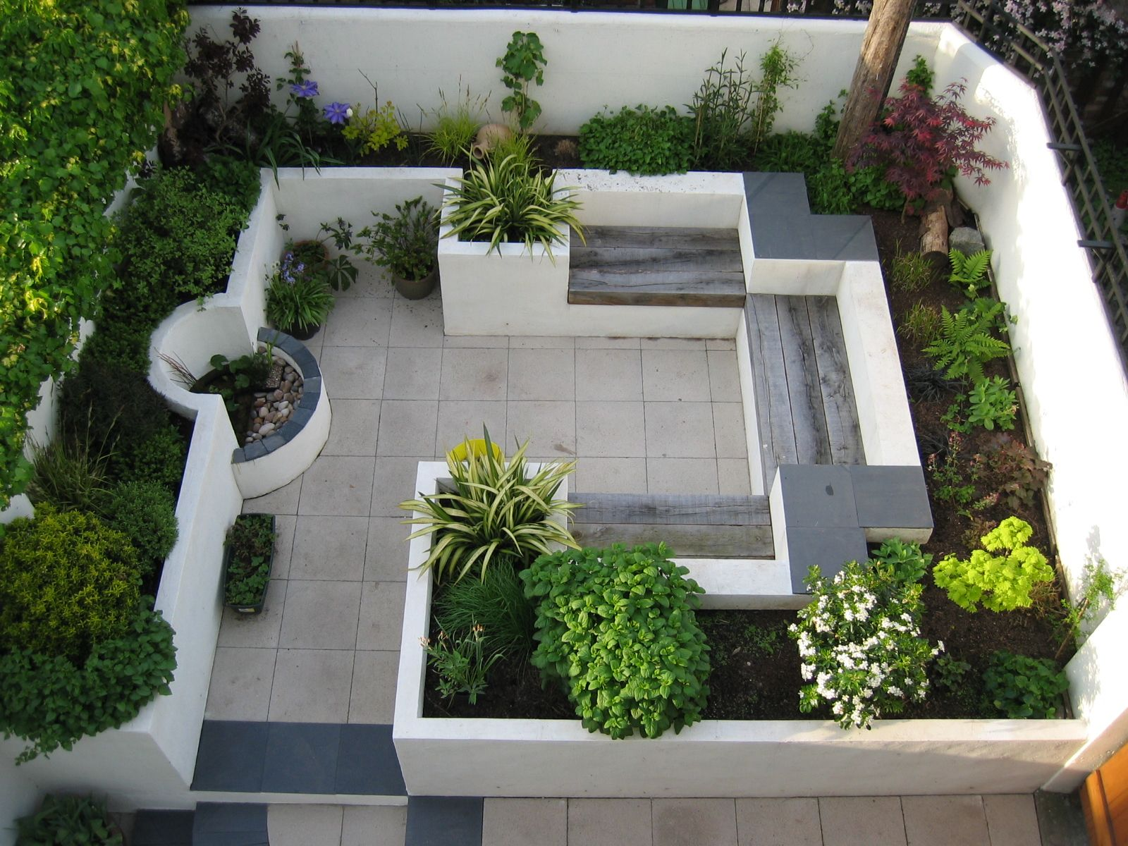 this modern courtyard garden makes good use of a small space with