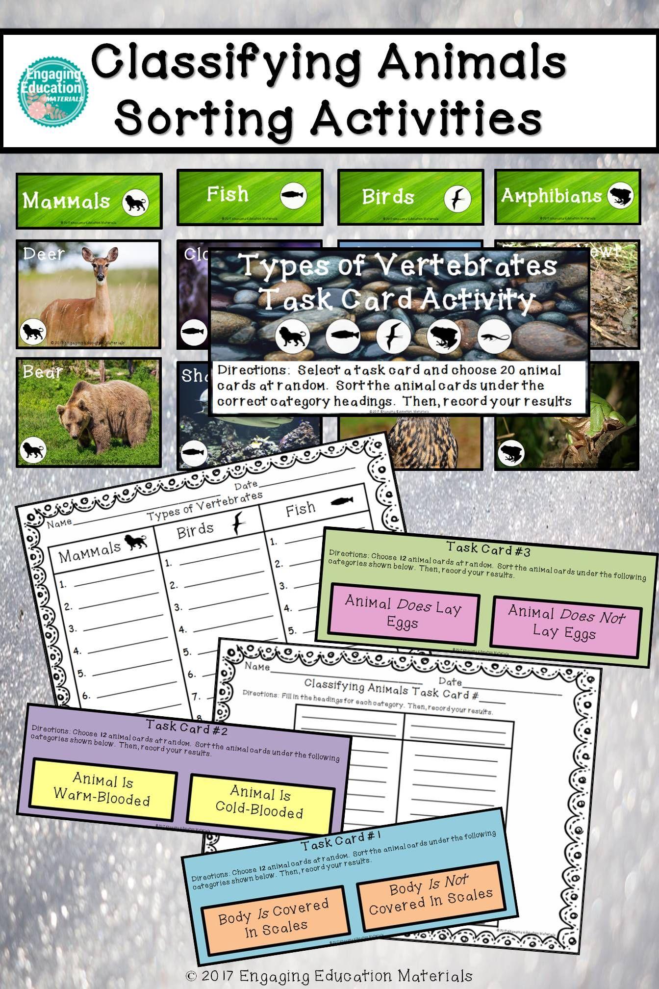Classifying Animals Sorting Activities
