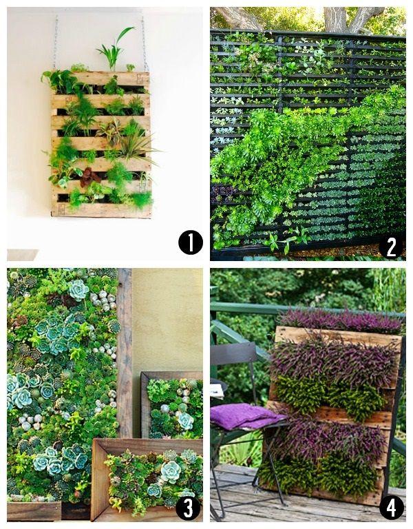 DIY Living Wall Ideas Diy Livingwall Gardening I Am Going To