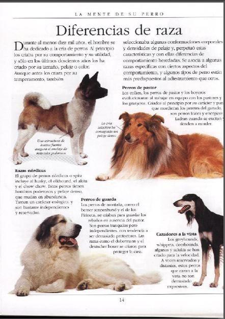 El Encantador De Perros Cesar Millan Pdf