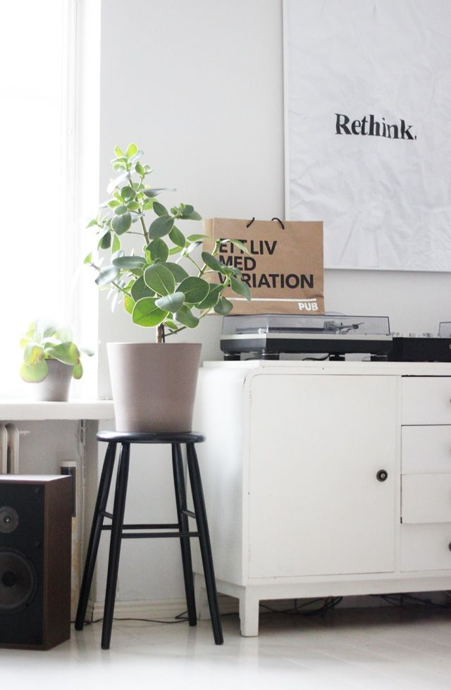 DIY HOME INSPO: PLANT STOOLS