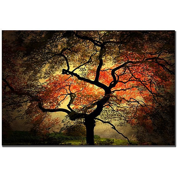 Philippe Sainte Laudy Japanese Print 6653317 Hsn Tree Canvas Trademark Fine Art Trademark Art