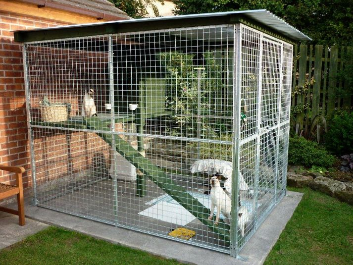 Extension On Patio Pad Outdoor Cat Enclosure Cat Enclosure Cat Cages