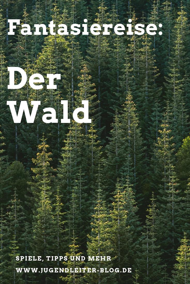 Fantasiereise Der Wald Fantasiereisen Fur Kinder Fantasiereisen Und Wald Grundschule
