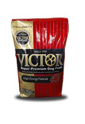 Victor Dog Food Gmofree High Energy Beef Meal For Dogs 40pound