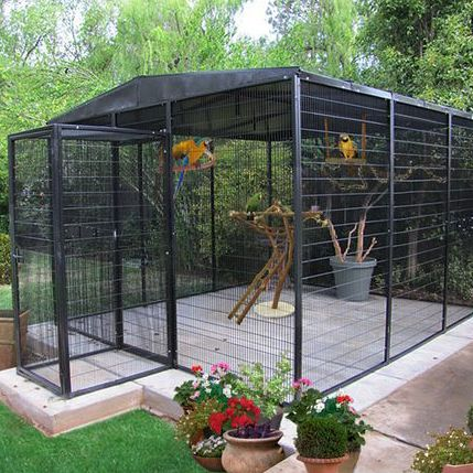 Beautiful aviary building aviaries pinterest oiseau for Amenagement jardin 974