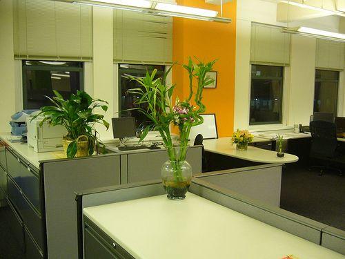 Feng Shui Oficina Buscar Con Google Art Deco Pinterest - Feng-shui-en-la-oficina
