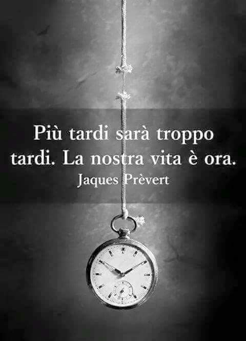Italian Quotes About Life Awesome Later Will Be Too Much Laterour Life Is Now Cose Che Mi Piace