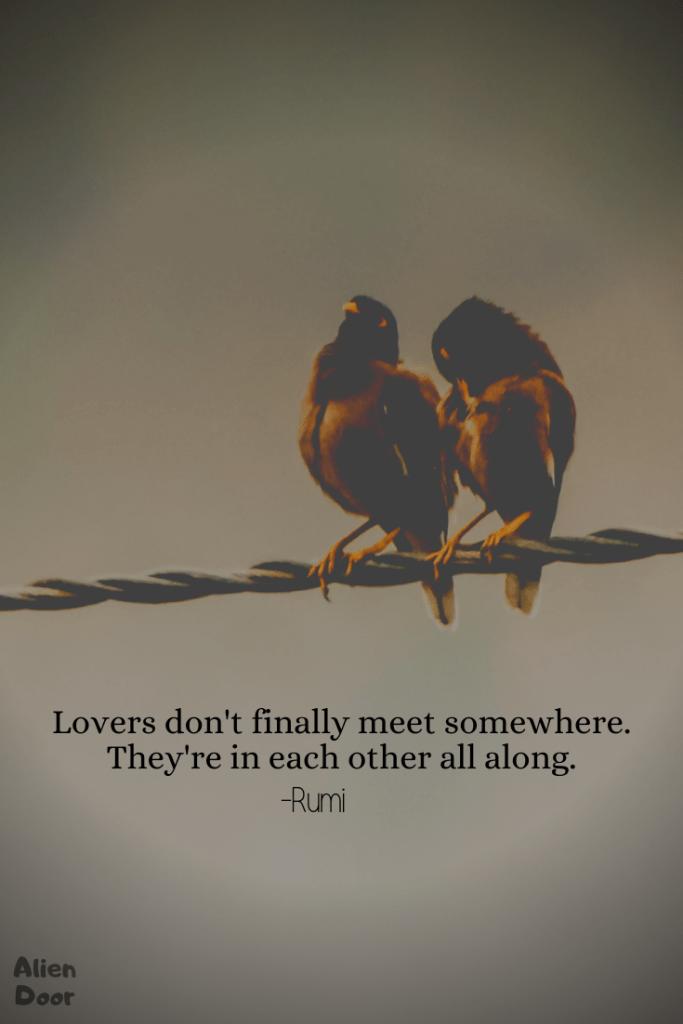10 Best Rumi Quotes On Life And Love That Will Inspire You | Alien Door