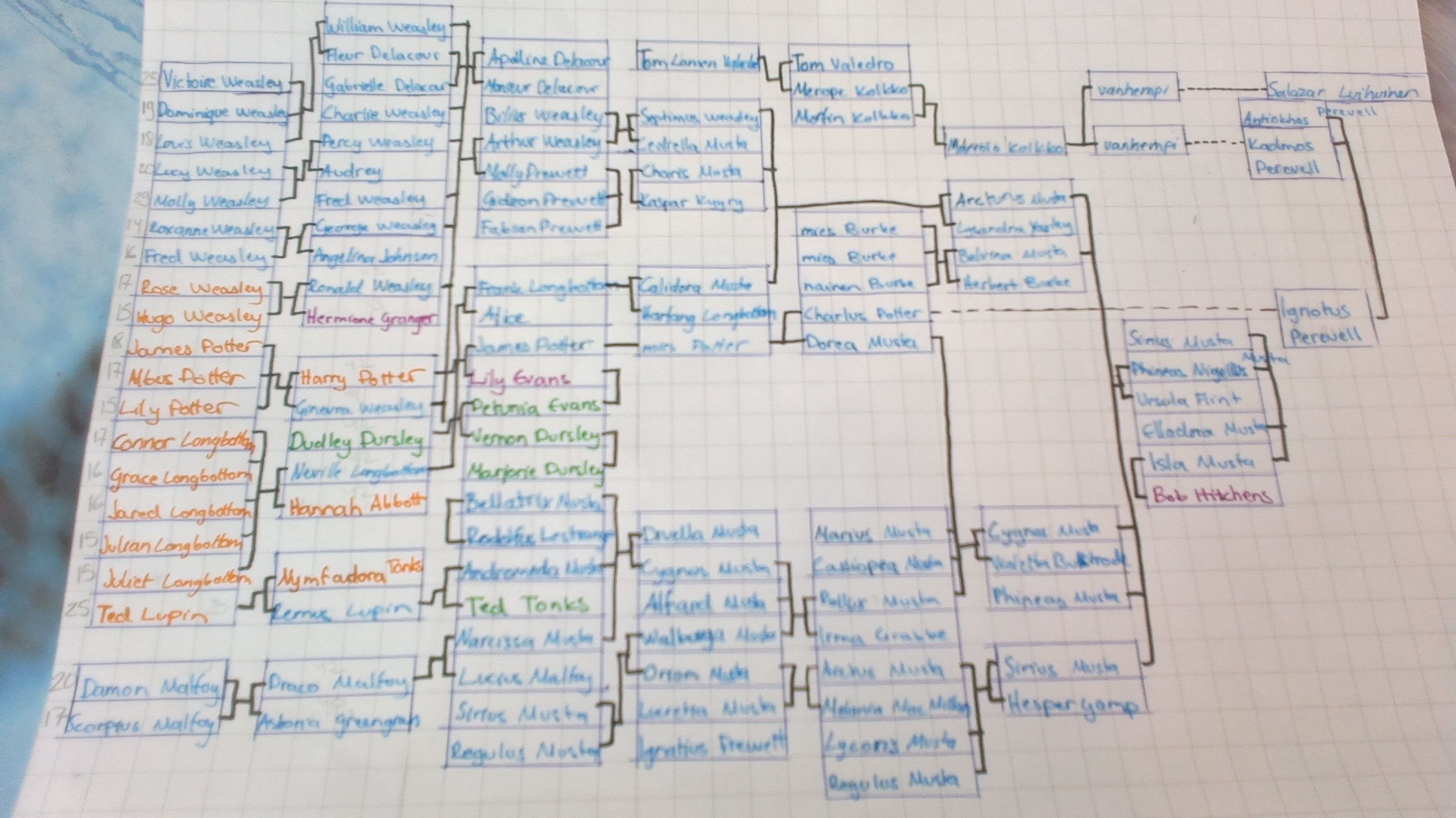 Family Tree of Black, Potter and Weasley:) I draw it myself:)