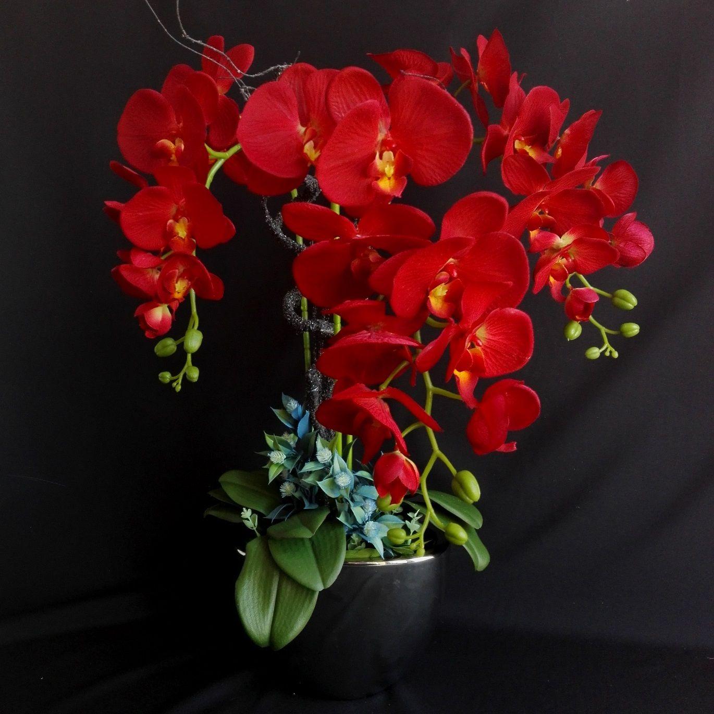 Storczyk Jak Zywy Czerwony Swiateczne Atelier Flowers Plants Color