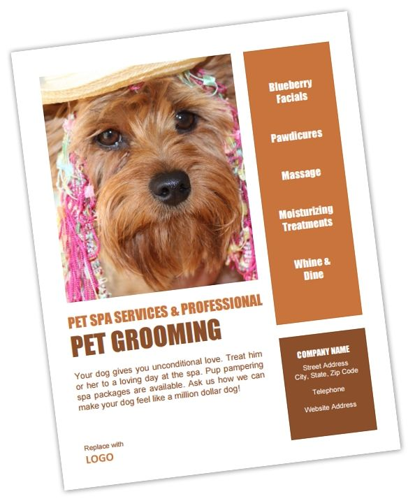 Pet Grooming Poster Flyer Template Pet Business Dashboard
