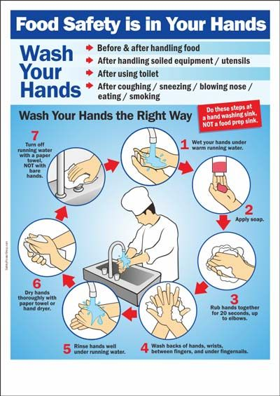 Food Safety Is In Your Hands Food Safety Posters Kitchen Safety Food Safety And Sanitation