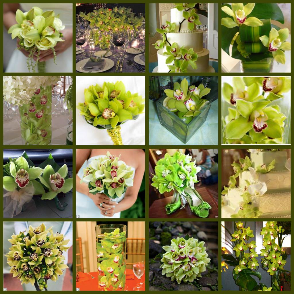Green cymbidium orchids wedding flowers florists floral
