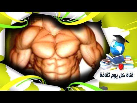 كمال الاجسام افضل 5 اطعمة سحرية وفعالة لبناء العضلات و بناء الاجسام كمال اجسام