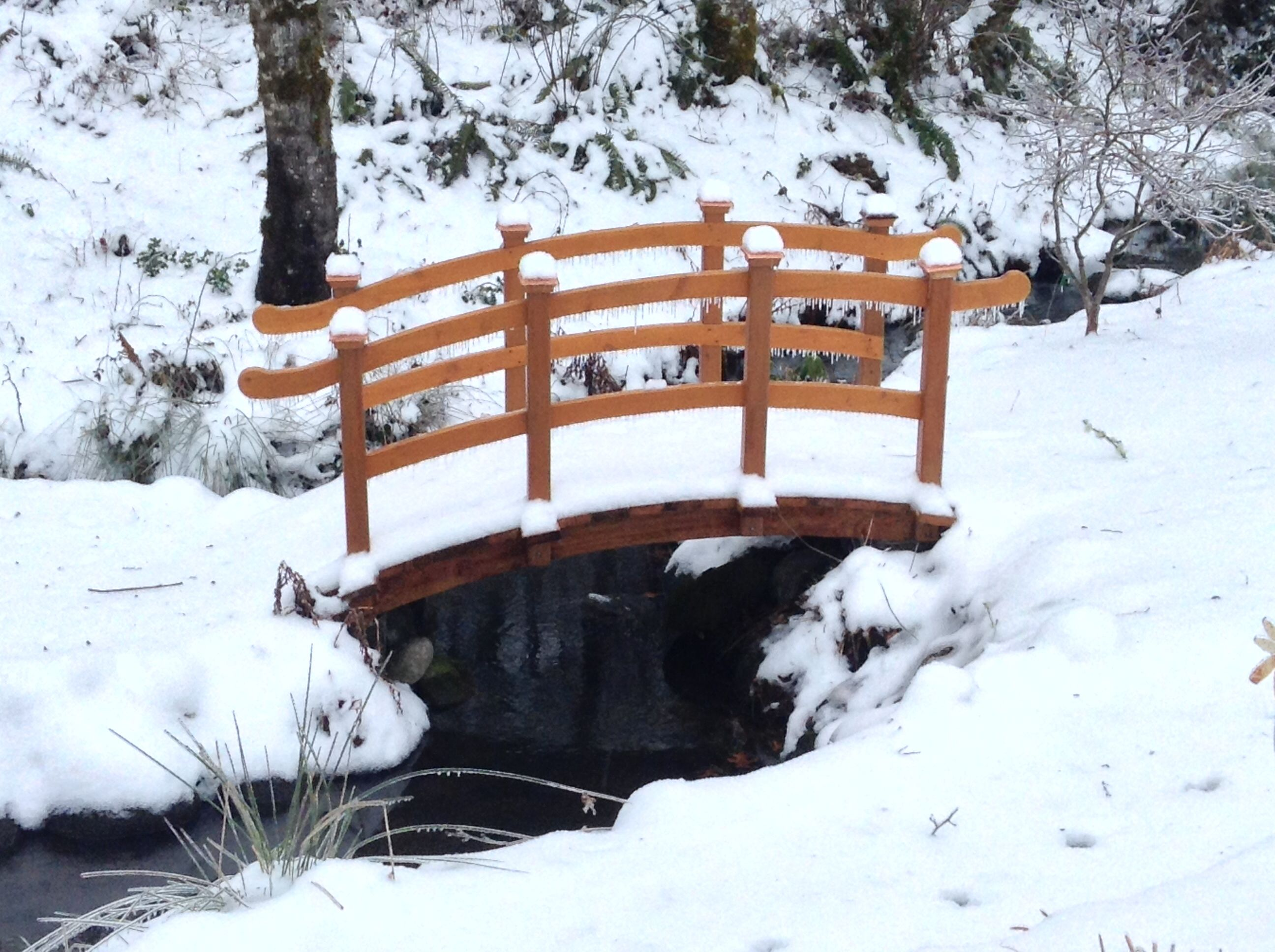 Our photo opp bridge with winter snow KnollCrestGardens.com   Best wedding venues, Wedding ...