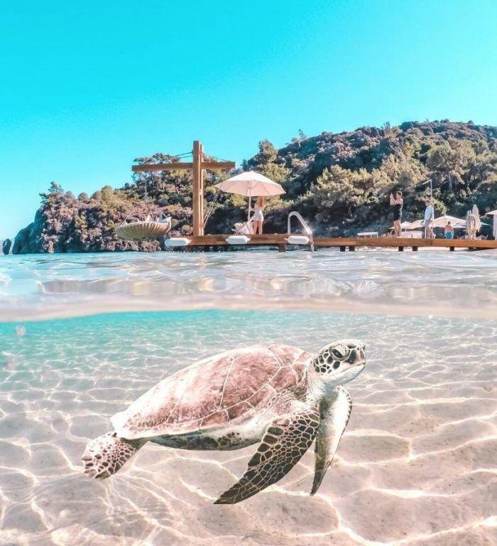 D-Hotel Maris Silent Beach, Turkey | Top 10 beaches ...