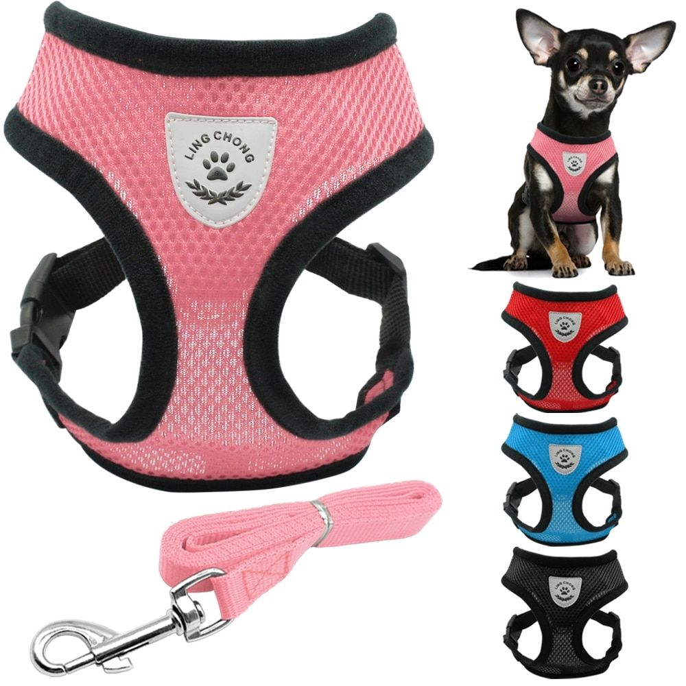 Soft Breathable Mesh Dog Harness And Leash Set