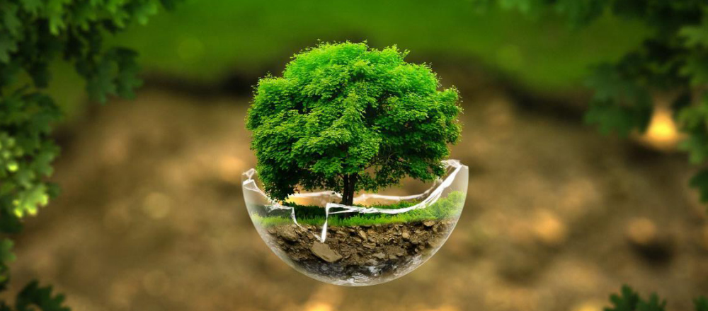 Every Day Is Earth Day Unh Scientists Make A Career Of Caring For The Earth In 2020 Best Nature Wallpapers Hd Best Nature Wallpapers Nature Wallpaper