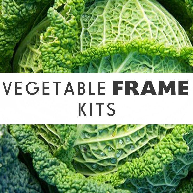 garden photo frames. Vegetable Frame For Supporting Garden Insect Netting \u0026 Fleece - Wondermesh Photo Frames