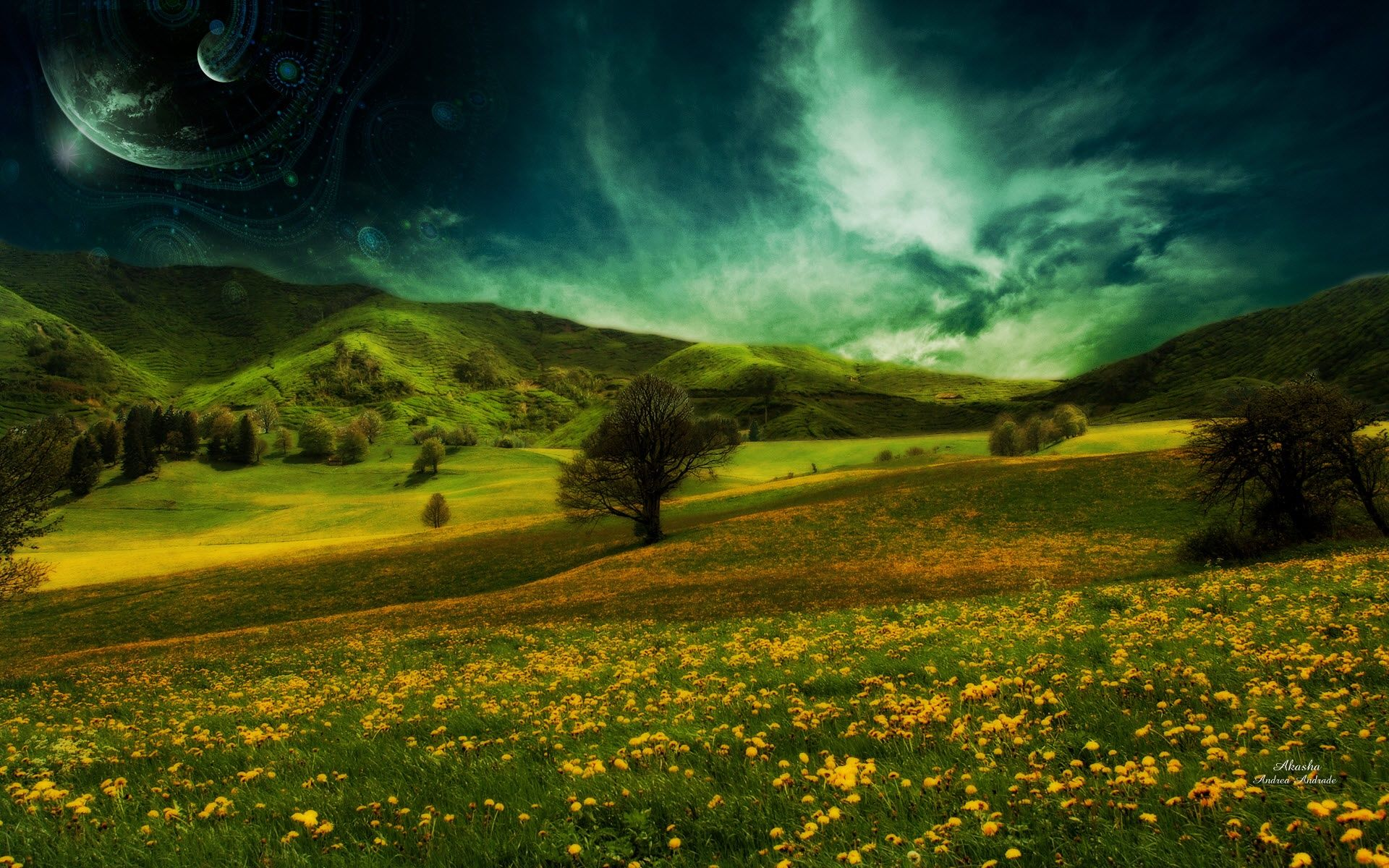 andrade art akasha by Andrea Andrade – Nature Fields HD Desktop Wallpaper