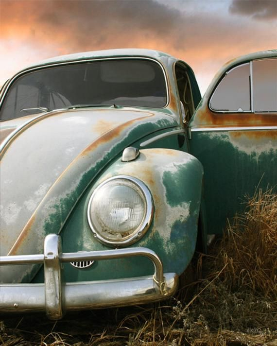 VW – VW Beetle – Volkswagon – VW Photo – Slug Bug – Pasture Car – Father's Day Gift – Andrea Kelley
