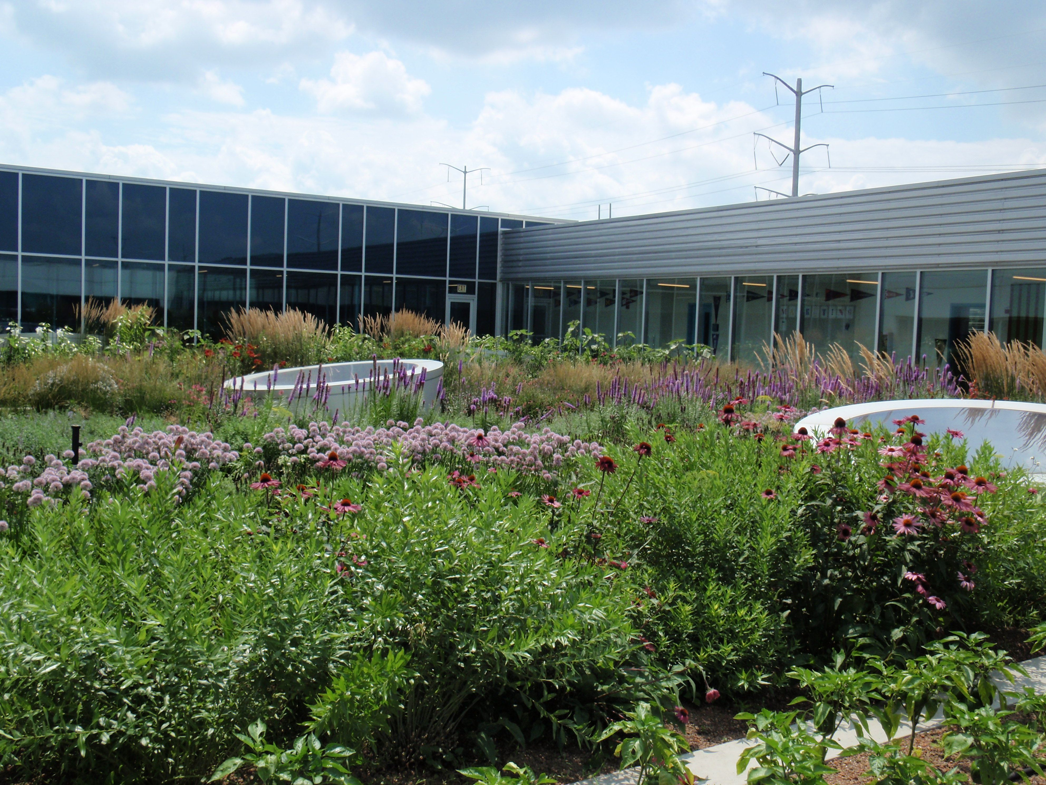 Rooftop Garden at the Gary Comer Youth Center in Chicago