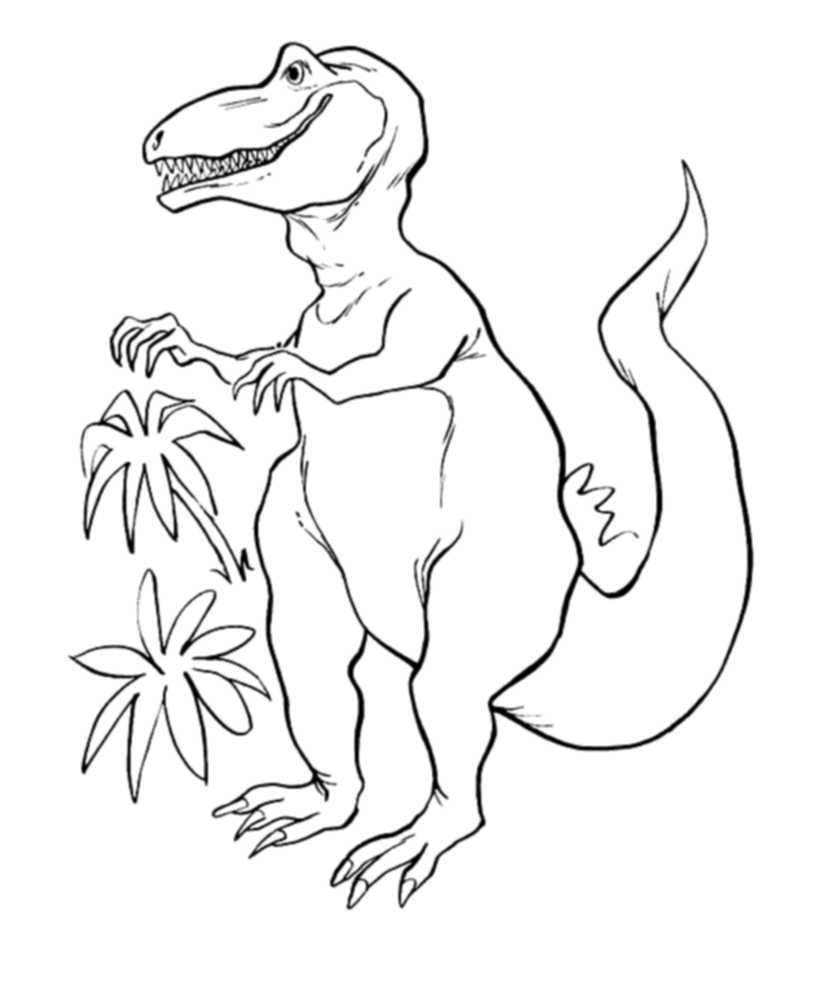 Realistic T-Rex Coloring Pages | Kids Colouring Pages | Pinterest