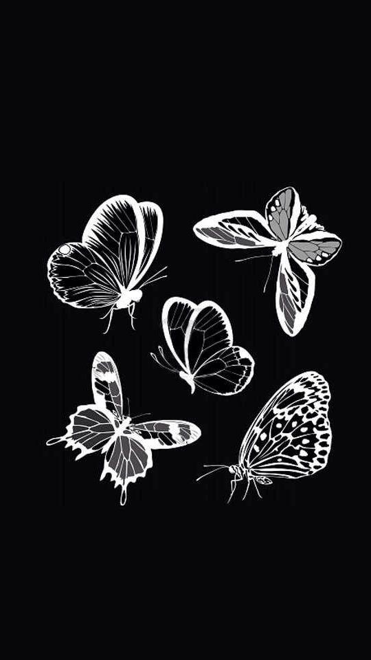 Black wallpaper butterfly hd