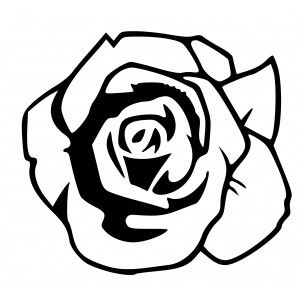 Rosen Blute Hot And Cool Autoaufkleber Book Folding Rose