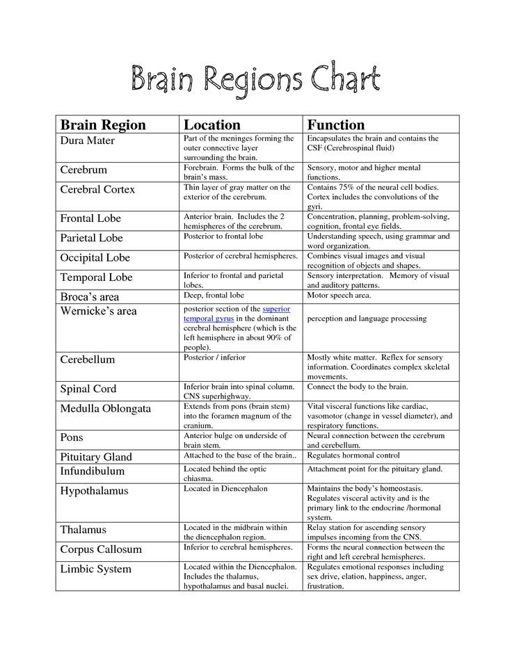 Image result for parts of the brain and their functions chart - kaplan optimal resume