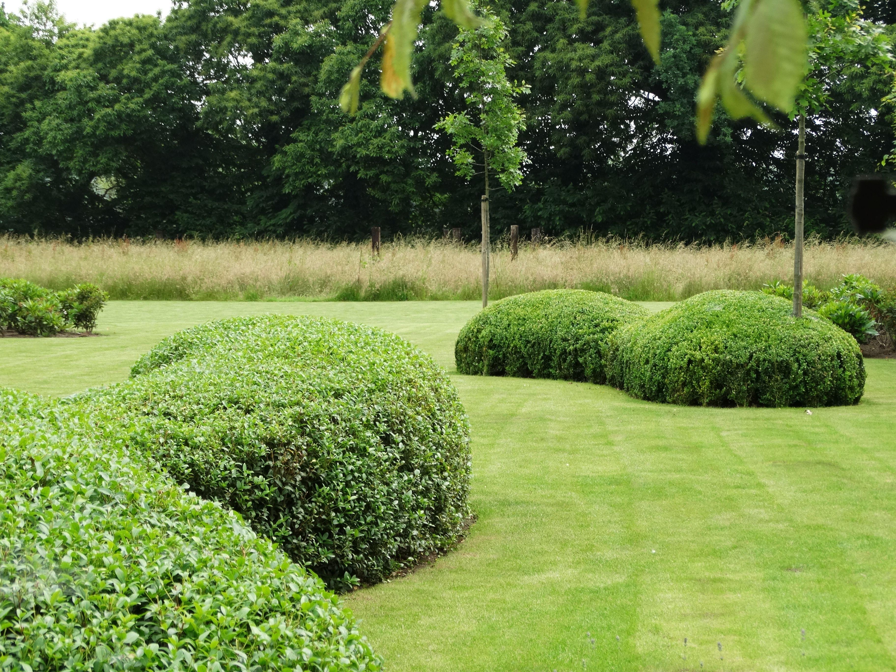 Een voorsmaakje van make concepts enkele voorbeelden van tuinontwerpen en tuin idee n die we - Formele meubilair ...