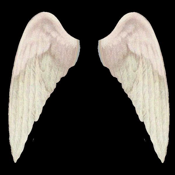 #freetoedit#wings #angel #angelwings #aesthetic  #remixit