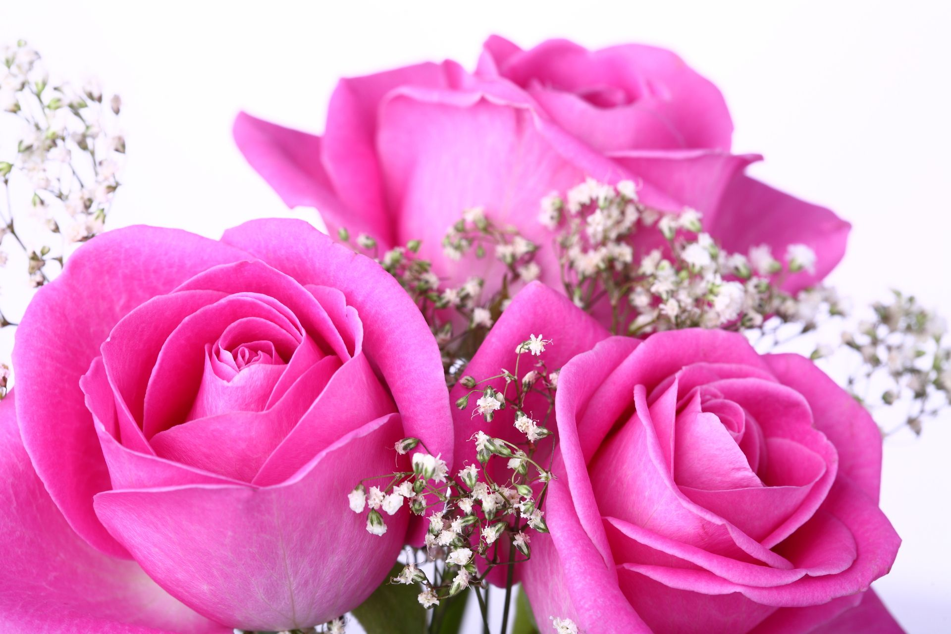 High Res Images for Mobile Screens Pink Flower, Pink